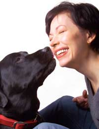 Teach Your Dog Affectionate Tricks